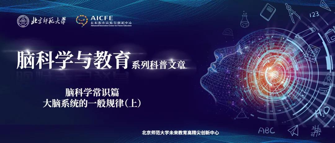 脑科学与教育蓝皮书: 脑科学常识篇之大脑系统的一般规律(上)