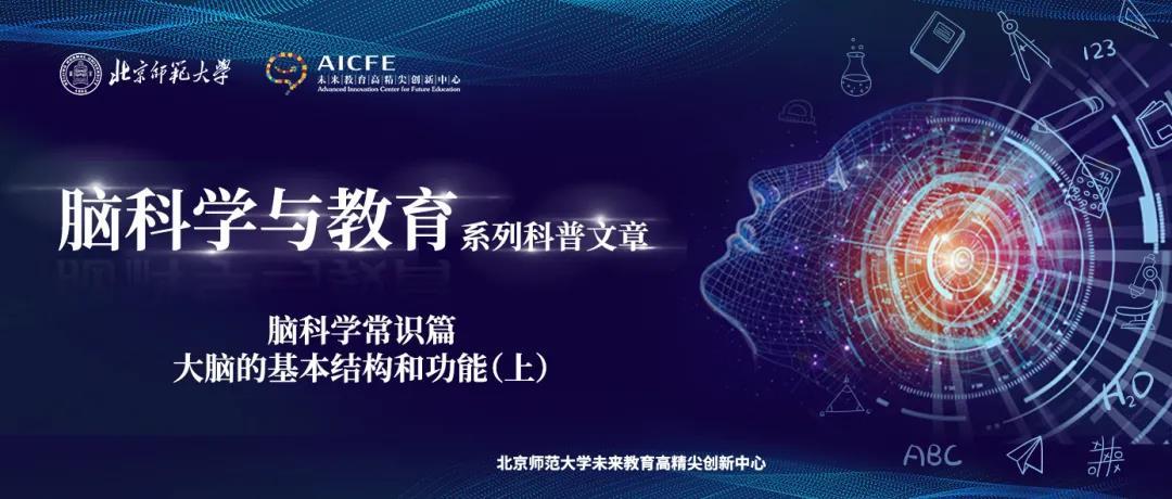 脑科学与教育蓝皮书:脑科学常识篇之大脑的基本结构和功能(上)