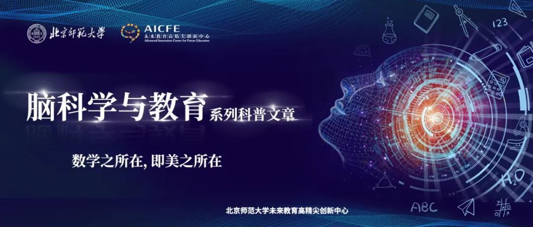 脑科学与教育蓝皮书:数学能力发展的脑科学研究(上)